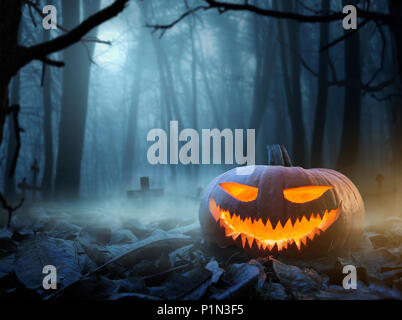 Halloween background, close up of Jack o Lantern pumpkin in the spooky forest at night with copy space - Stock Photo