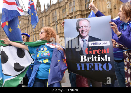 Westminster, London, UK. 12th June 2018. The Anti Brexit protesters standing outside Parliament during the MP debate and vote on the EU Withdrawal Bill. Credit: Matthew Chattle/Alamy Live News - Stock Photo