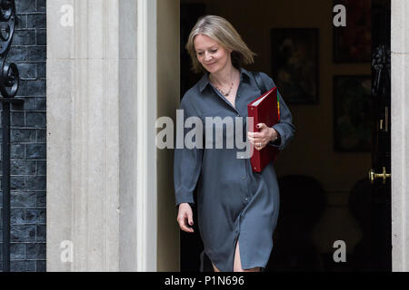 London, UK. 12th June, 2018. Elizabeth Truss MP, Chief Secretary to the Treasury, leaves 10 Downing Street following a Cabinet meeting held prior to the House of Commons debate and votes on amendments proposed by the House of Lords to the EU Withdrawal Bill. Credit: Mark Kerrison/Alamy Live News - Stock Photo