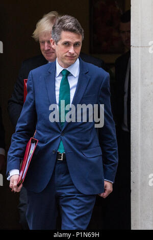 London, UK. 12th June, 2018. Gavin Williamson MP, Secretary of State for Defence, leaves 10 Downing Street following a Cabinet meeting held prior to the House of Commons debate and votes on amendments proposed by the House of Lords to the EU Withdrawal Bill. Credit: Mark Kerrison/Alamy Live News - Stock Photo