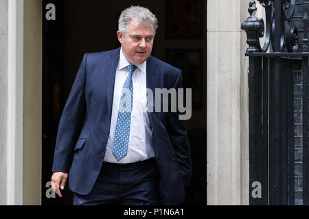London, UK. 12th June, 2018. Brandon Lewis MP, Minister Without Portfolio, leaves 10 Downing Street following a Cabinet meeting held prior to the House of Commons debate and votes on amendments proposed by the House of Lords to the EU Withdrawal Bill. Credit: Mark Kerrison/Alamy Live News - Stock Photo
