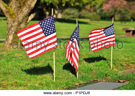 US Flags On Military Graves - Stock Photo