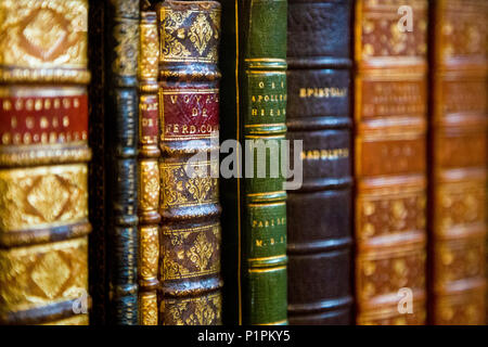 Spines of old hardback antique books on a shelf - Stock Photo