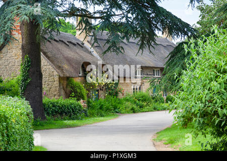 Rose covered thatched cottages in Cotswold village of Hidcote Bartrim, The Cotswolds, Gloucestershire, England, United Kingdom, Europe - Stock Photo