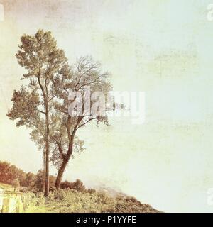 Vintage autumnal tree in soft blue and sepia tones with copy space. - Stock Photo
