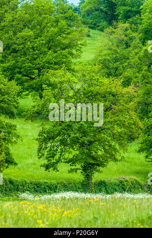 France, Lot, Causses du Quercy regional natural park, Causse de Gramat, countryside in Padirac region - Stock Photo