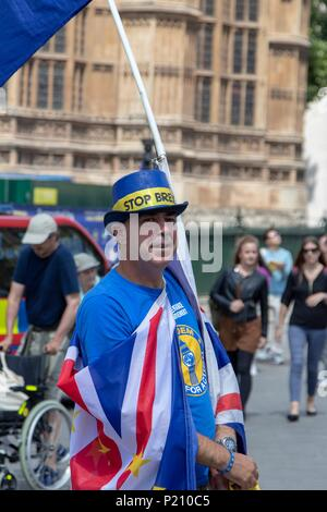 London, UK. 13th Jun, 2018. Anti Brexit campaigners outside the House of Commons Credit: Andy Morton/Alamy Live News - Stock Photo