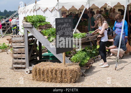 Market garden sign at Daylesford Organic farm summer festival. Daylesford, Cotswolds, Gloucestershire, England - Stock Photo