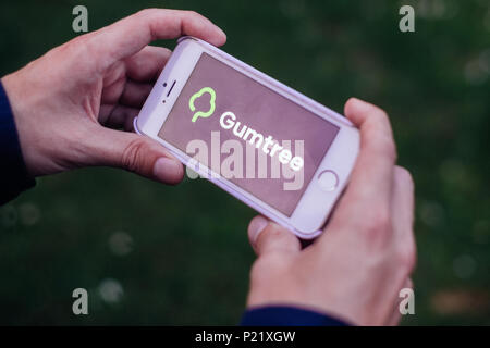 Closeup of hands holding iPhone screen with GUMTREE LOGO and ICON - Stock Photo