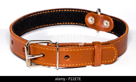 leather dog-collar isolated over the white background, side view.