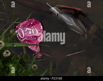 A discarded balloon floats on a wildlife pond causing environmental damage. - Stock Photo