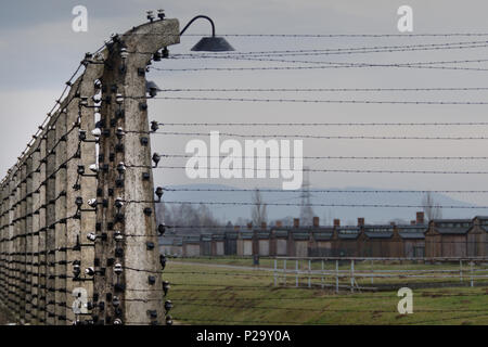 Electrified fence line in the ruins of Auschwitz-Birkenau with chimney stacks in the background. - Stock Photo