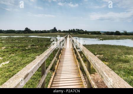Bridge across marshes - Stock Photo