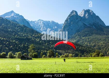 Paraglider landing on meadow overlooking Alpspitz, Jubilaeums Ridge and Waxenstein, Garmisch-Partenkirchen, Bavaria, Germany - Stock Photo