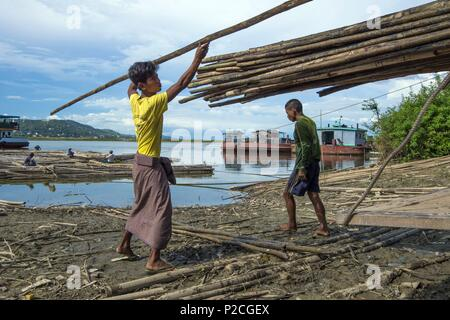 Myanmar, Mandalay, the jetty, unloading bamboo - Stock Photo