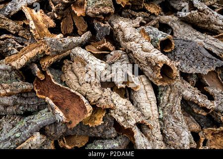Cork from a tree, Alentejo, Portugal - Stock Photo