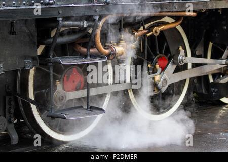 France, Alpes Maritimes, Puget Theniers, the Train des Pignes - Stock Photo