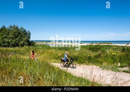 Cycle path along Kiel fjord, Baltic Coast, Schleswig-Holstein, Germany - Stock Photo