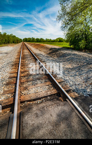 Vertical shot of railroad tracks disappearing into the distance. - Stock Photo