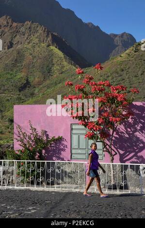 Cape Verde, Fogo, Pico de Fogo, Cha das caldeiras, Colourful house on the caldeira of the volcano Pico de Fogo - Stock Photo