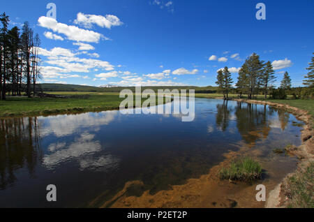 Gibbon River flowing through Gibbon Meadows in Yellowstone National Park in Wyoming United States