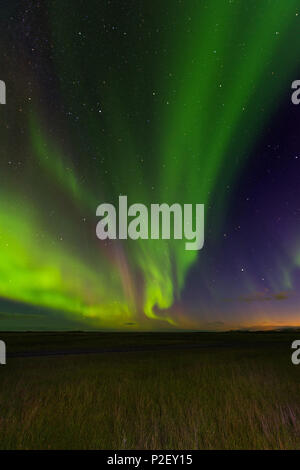 Aurora Borealis, Northern Lights, At Night, Sky, Stars, Iceland, Europe - Stock Photo