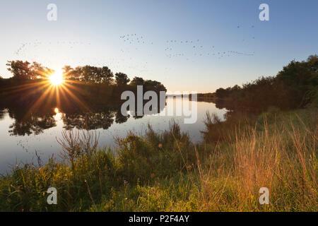 Birtener Altrhein, old arm of Rhine river, near Xanten, Lower Rhine, North-Rhine Westphalia, Germany - Stock Photo