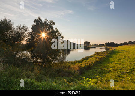 Old arm of Rhine river, near Rees, Lower Rhine, North-Rhine Westphalia, Germany - Stock Photo