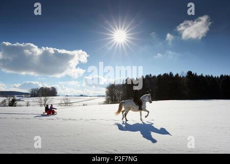 Mother on horse pulling children on sledge, Buchensee, Muensing, Bavaria Germany - Stock Photo