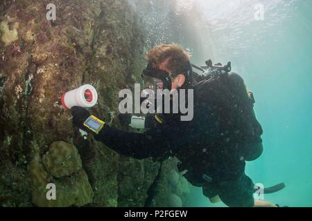 Construction Mechanic 3rd Class Andersen Gardner, assigned to Underwater Construction Team (UCT) 2, tests the density of the metal pylons of a pier in Kwajalein, Marshal Islands while participating in Valiant Shield Sep. 15, 2016. Valiant Shield is a biennial U.S. Air Force, Navy and Marine Corps exercise held in and around Guam, focusing on real-world proficiency in sustaining joint forces at sea, in the air, on land and in cyberspace. (U.S. Navy Combat Camera Photo by Mass Communication Specialist 2nd Class Daniel Rolston/Released) - Stock Photo