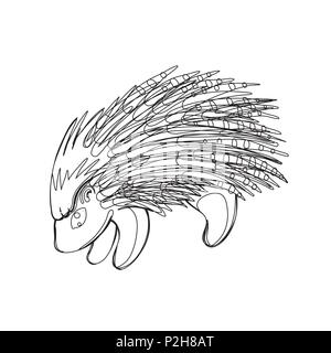 Vector illustration of porcupine in continious line graphic style, black countour outline sketch isolated on white - Stock Photo