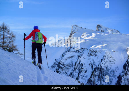 Woman back-country skiing ascending towards Frauenwand, Frauenwand, valley of Schmirn, Zillertal Alps, Tyrol, Austria - Stock Photo