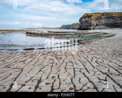 Wave cut platform of Jurassic lias limestone strata in the Bristol Channel  at Blue Ben cliff near East Quantoxhead Somerset UK - Stock Photo