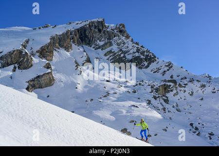 Woman back-country skiing ascending towards Monte Salza, Monte Salza, Valle Varaita, Cottian Alps, Piedmont, Italy - Stock Photo
