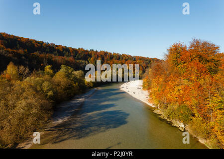 Isar river and Isar valley in Autumn, Indian summer, beech trees and gravel banks near Gruenwald, district Munich, Bavarian alpi - Stock Photo