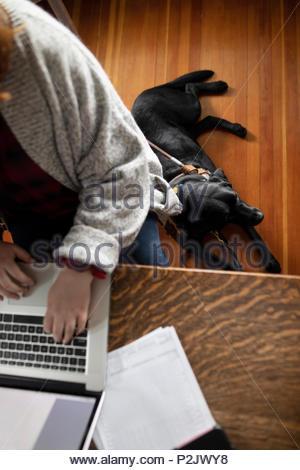 Seeing eye dog laying on floor below woman at laptop - Stock Photo
