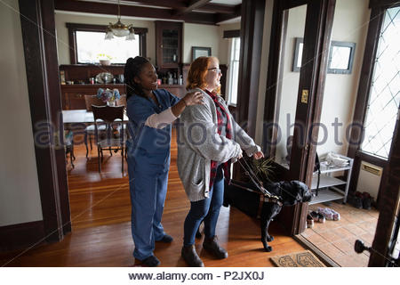 Home caregiver preparing visually impaired woman and seeing eye dog for walk - Stock Photo