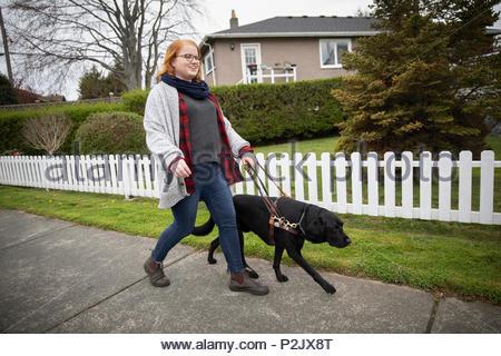 Seeing eye dog leading visually impaired woman walking on neighborhood sidewalk - Stock Photo