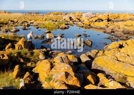 Boy with fishing net near the beach at Hullehavn Camping, Summer, Baltic sea, Bornholm, Svaneke, Denmark, Europe - Stock Photo