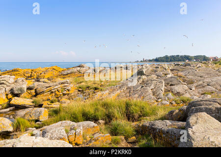 lighthouse of Svaneke with sea gulls, Rocky shore, Summer, Baltic sea, Bornholm, Svaneke, Denmark, Europe - Stock Photo