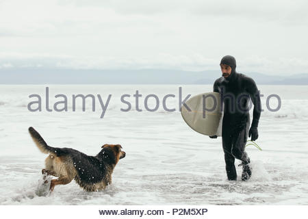 Male surfer with dog carrying surfboard in ocean surf - Stock Photo