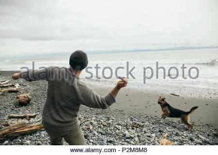 Man throwing stick for dog on rugged beach - Stock Photo