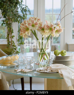 Pink amaryllis in glase vase on glass dining table with white plates and glass jug - Stock Photo