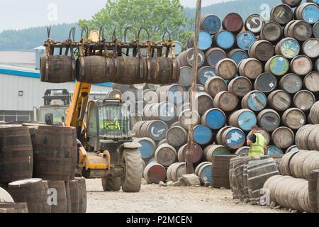 whisky barrels at Speyside Cooperage, Craigellachie, Aberdeenshire, Scotland, UK - Stock Photo