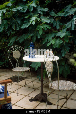 White metal chairs and small circular table on paved patio in townhouse garden with large green fig plant - Stock Photo