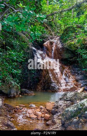 Thailand, Trang province, Ko Libong island, waterfall behind Tung Yaka beach west side of the island - Stock Photo