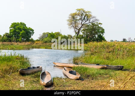 Traditional Mokoros (dugout canoe) on the riverbank, Okavango Delta, North-West District, Botswana - Stock Photo