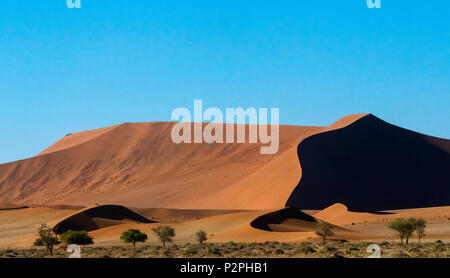 Sand dune 45 in southern Namib Desert, Sossusvlei, Namib-Naukluft National Park, Hardap Region, Namibia - Stock Photo