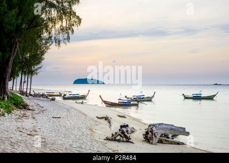 Thailand, Satun province, Tarutao National Marine Park, Ko Adang island, traditional long tail boats on Laem Son beach - Stock Photo