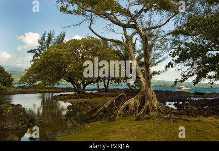 Pahoa, Hawaii, USA. 6th June, 2018. The Hilo Bayfront Beach Park is surrounded in lush vegetation as the Kilauea Volcano lower east rift zone continues the eruption on Wednesday, June 6, 2018, in Pahoa, Hawaii. Credit: L.E. Baskow/ZUMA Wire/Alamy Live News - Stock Photo